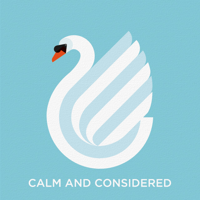 Calm and considered swan